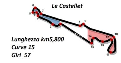 F1, Hamilton si prende la pole anche in Francia